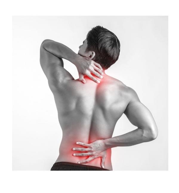 Schmerzsymtome aus  Nottuln
